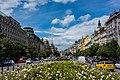 Praha, rozkvetlé Václavské náměstí.jpg