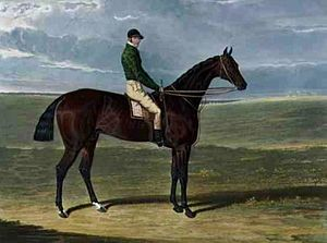Priam (horse) - Priam. Painting by John Frederick Herring, Sr.