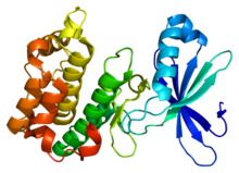 Protein PRKAA2 PDB 2h6d.png