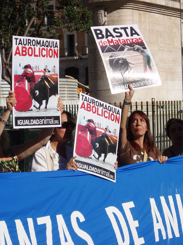 against bullfighting In november 2015, a petition was signed by around 300,000 spaniards against a government proposal that will introduce bullfighting courses in state schools lately, bullfighting audiences have been dwindling and a number of towns have been banning the practice as well.