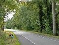 Provinciale weg N742 bij Borne.JPG