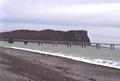 Puerto Caleta la Misión (3).PNG