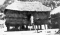 Queensland State Archives 5849 Native House Murray Island 20 July 1911.png