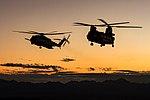 RAF CH-47 Chinook and US Marine CH-53 Sea Stallion MOD 45164925.jpg