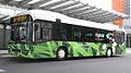 RGTR-Bus Linn 205.jpg