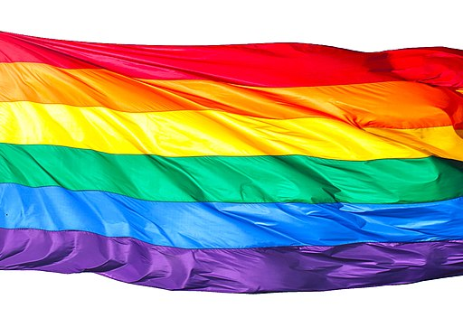 Rainbow flag on white background - harvey milk plaza, san francisco (2012) (8148105584)