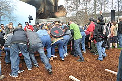 Raising John T. Williams Memorial Totem Pole 050.jpg