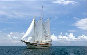 The Schooner Raja Laut under Sail