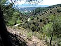 Rambla de Valdemiedes SW - Murero Zaragoza Spain.JPG