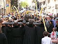 Rams 2014 a Santa Agnès P1240048.jpg