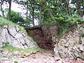 Red Rake with footpath above - geograph.org.uk - 418653.jpg