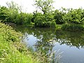 Reflections in the canal - geograph.org.uk - 1359522.jpg