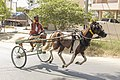 Rekla Racer in Namakkal, Tamil Nadu.jpg