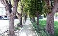 ResidHotel Le Clos de la Cité, Carcassonne (3991212392).jpg
