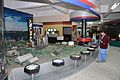 Resources of Jharkhand Gallery - Ranchi Science Centre - Jharkhand 2010-11-29 8875.JPG