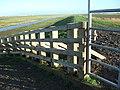 Ribble Estuary - geograph.org.uk - 766515.jpg