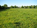 River Ver flood meadows at Sopwell - geograph.org.uk - 1300019.jpg
