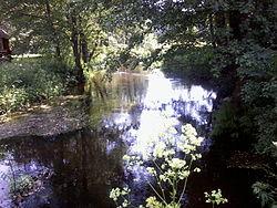 River stracha.jpg