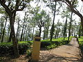 Road view to and from OOTY (166).JPG