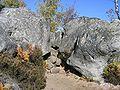 Rochers en forêt de Fontainebleau6.JPG