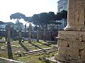 Roma - Foro 004.jpg