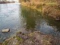 Ron Flussmündung in die Reuss, Root LU 20170311-jag9889.jpg