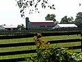 Rosebud Farm (6).JPG