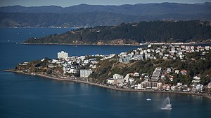 Roseneath's peninsula, Oriental Bay at its foot