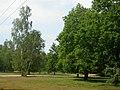 Royal Common - geograph.org.uk - 187669.jpg