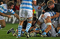 Rugby world cup 2011 NEW ZEALAND ARGENTINA (7309671490).jpg