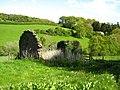 Ruin near Wain-y-Parc - geograph.org.uk - 1288793.jpg