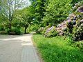 Rundweg Eimsbüttler Park Am Weiher.jpg