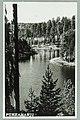 Runebergin kumpu, Takaharju, Lammasharju, Lahti Takaharjun ja Lammasharjun välissä, 1950s PK0212.jpg