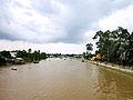 Sông Ô Môn.jpg