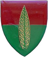SADF 10 Anti Aircraft Artillery Regiment emblem.jpg
