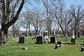 SW corner - Woodland Cemetery.jpg
