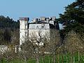 Saint-Crépin-de-Richemont château Saint-Crépin (6).JPG
