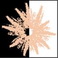 Salmon spore print icon.png