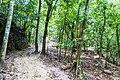 Samaná Province, Dominican Republic - panoramio (133).jpg