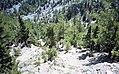 Samaria Gorge, Crete (150853) (9453322498).jpg