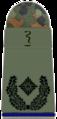 SanH 251-Oberstabsapotheker.png