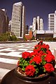 San Francisco - Yerba Buena Gardens (1138416091).jpg