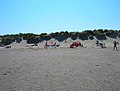 Sand Dunes, East Head - geograph.org.uk - 522895.jpg