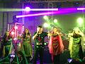 Sandy concert in Houston.JPG