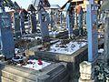 Sapanta Cemetery07.JPG