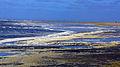Schaumteppich Norderney Nationalpark Niedersächsisches Wattenmeer.jpg