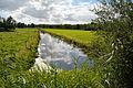 Schleswig-Holstein, Burg (Dithmarschen), ein unbenannter Wettern östlich des Nord-Ostsee-Kanals NIK 5384.JPG