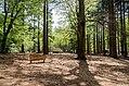 Scoutcentrum Buitenzorg Baarn - panoramio (2).jpg