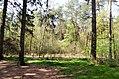 Scoutcentrum Buitenzorg Baarn - panoramio (8).jpg