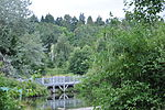 Seattle - Meadowbrook Pond 01.jpg